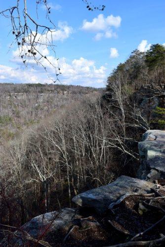 Buck's Pocket State Park