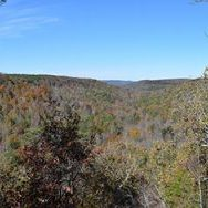 Cane Creek Canyon Nature Preserve -Tuscumbia, Colbert County, Alabama.