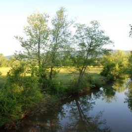 Chief Ladiga Trail- biking trail Calhoun County Alabama