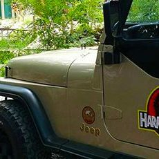 Harmony-Park-Safari-Huntsville-Alabama-al