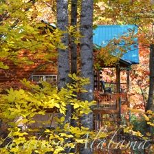 alabama-cabins