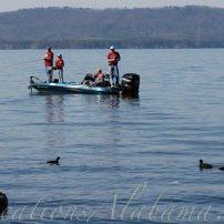 Bass Fishing Guntersville Lake Alabama